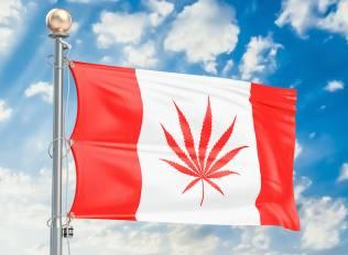Canada Legalizes Marijuana In Historic Vote 1