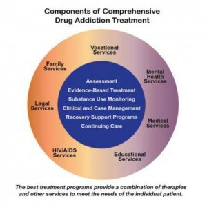 components-of-addiction-treatment-300x300