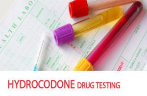 Hydrocodone detection times