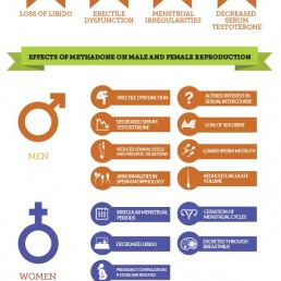 How methadone affects sex and pregnancy (INFOGRAPHIC)