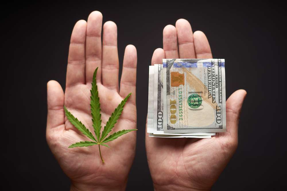 Amid Michigan Legalization, Black Market Weed Goes Unchecked