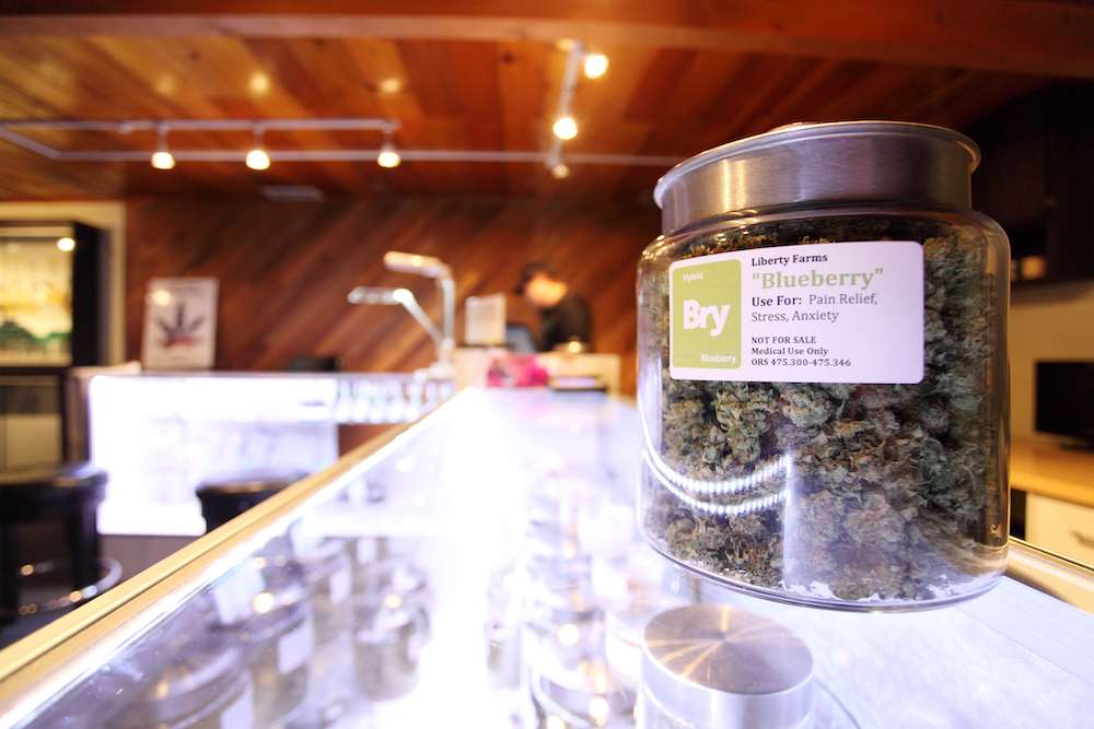 How Cannabis Dispensaries Impacted Opioid Death Rates