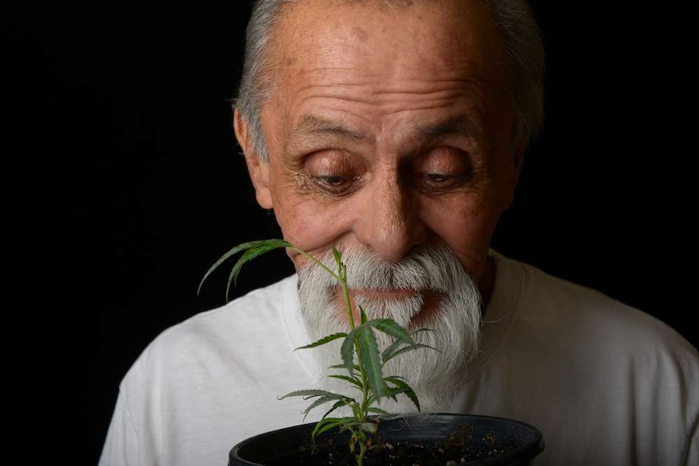 Senior Marijuana Use Increases, But Where Is The Research?