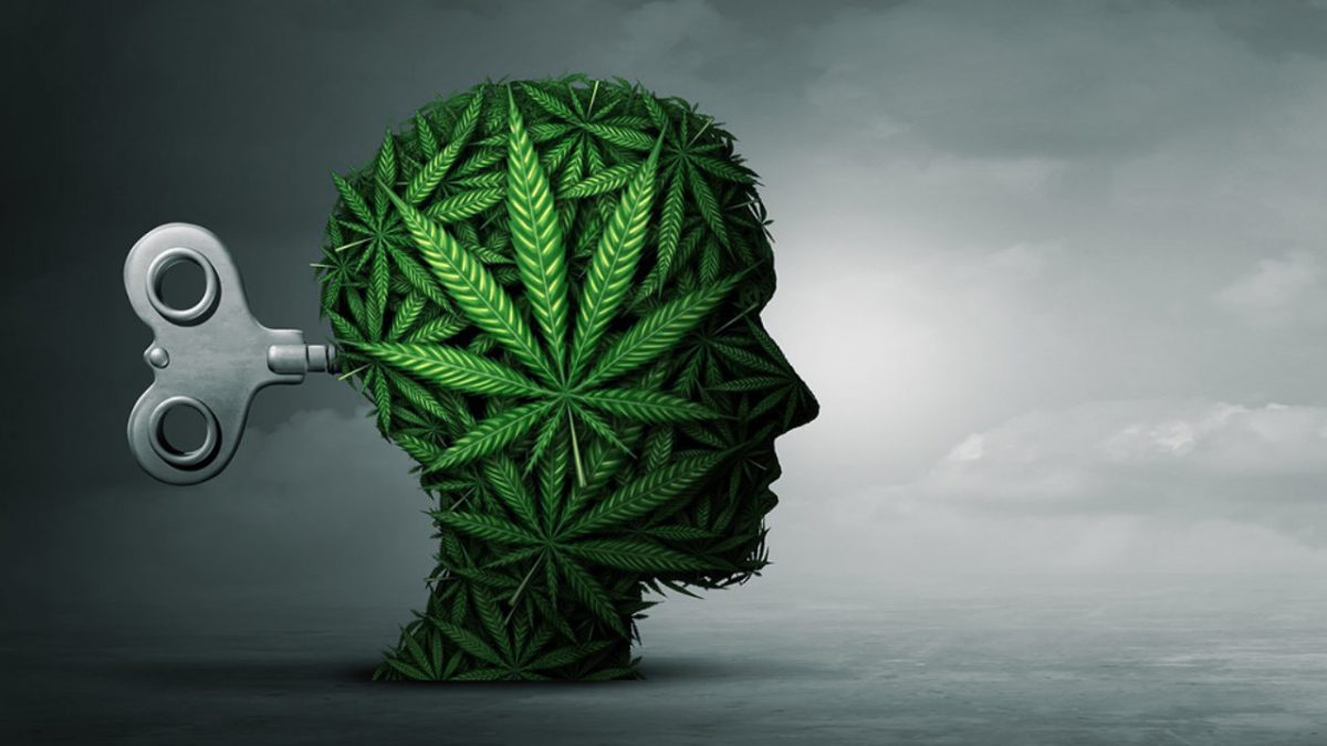 Is Cannabis-Induced Psychosis Permanent? Answers for College Students and Parents 1